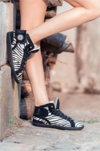 barons-zebre