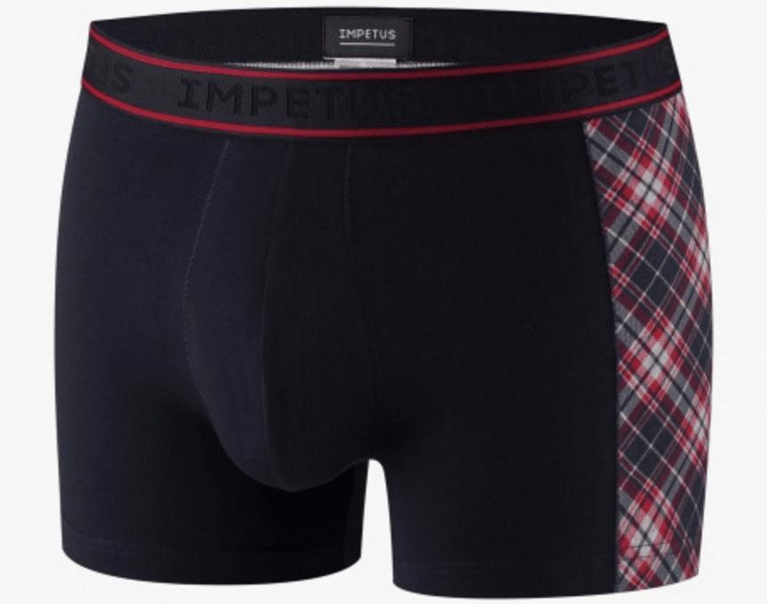 Impetus -Boxer X'mas Special